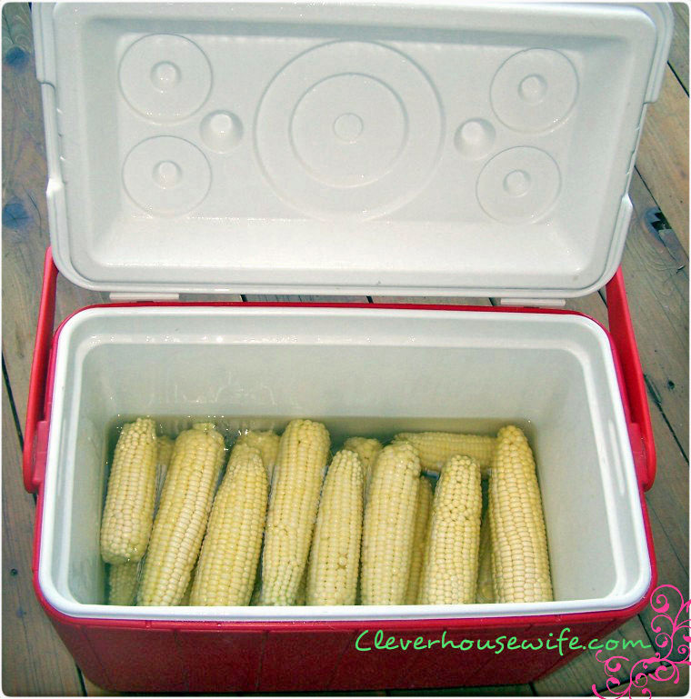 How to Cook Corn on the Cob for Large Crowds: Cooler Corn!