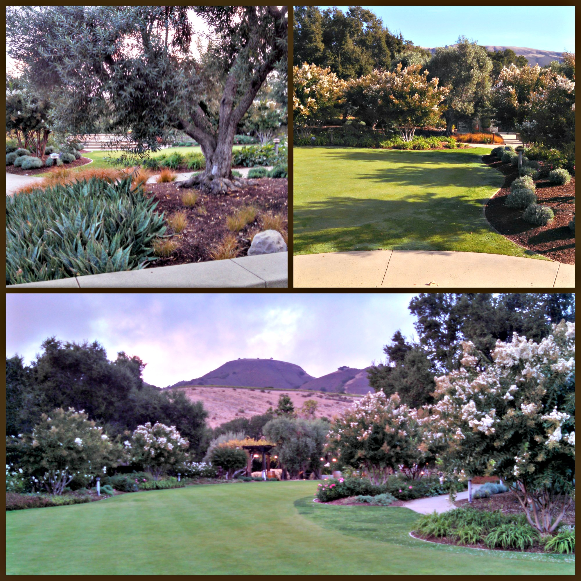 Holman Ranch in Carmel Valley for your Perfect Special Event.