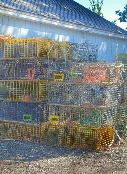 Lobster Cages from Libby's Market