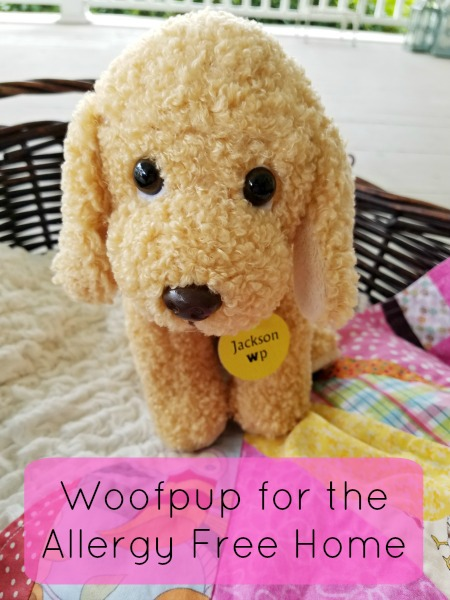 Woofpup for the Allergy Free Home