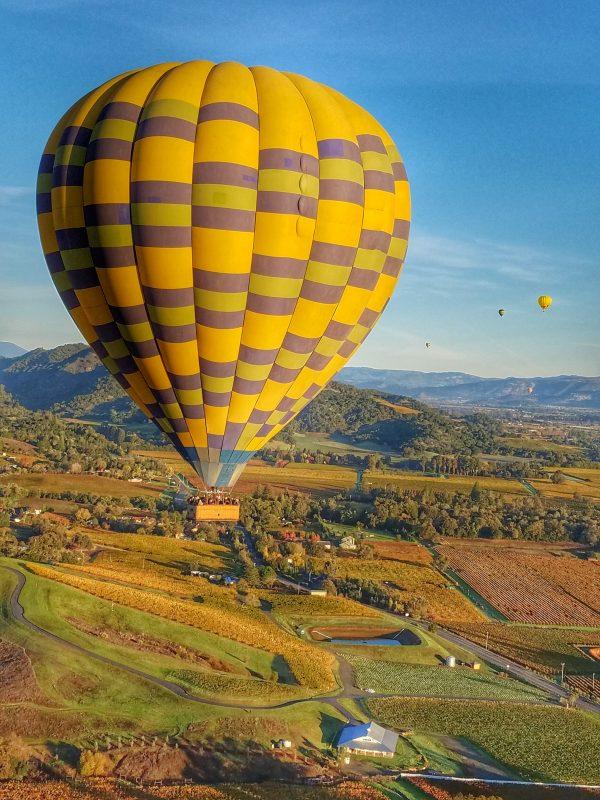 Up Up and Away: Hot Air Balloons Over Napa Valley