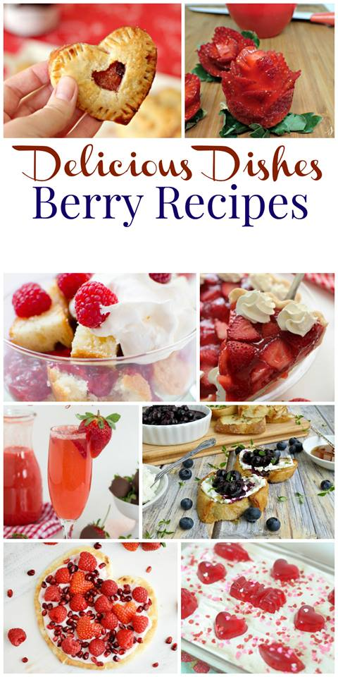 Delicious Dishes Berry Party long