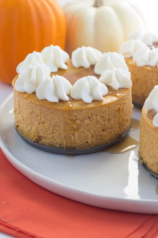 Mini Pumpkin Cheesecakes from Cookie Dough and OvenMitt