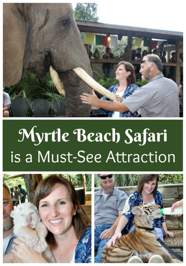 Things to Do & Attractions in Myrtle Beach | Visit Myrtle ...