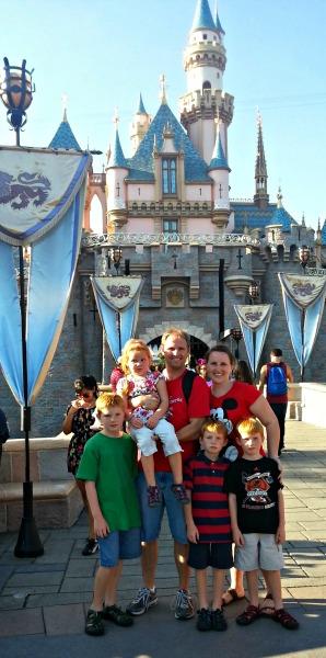 Disneyland Castle 2013