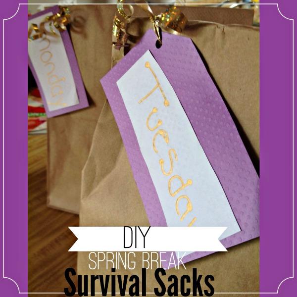 DIY Spring Break Survival Sacks