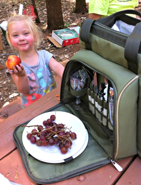 Clean Eating while on a Picnic