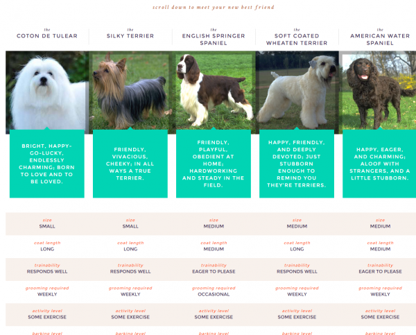 Breed selection