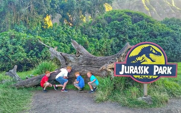 Jurassic Park fallen tree at Kualoa Ranch