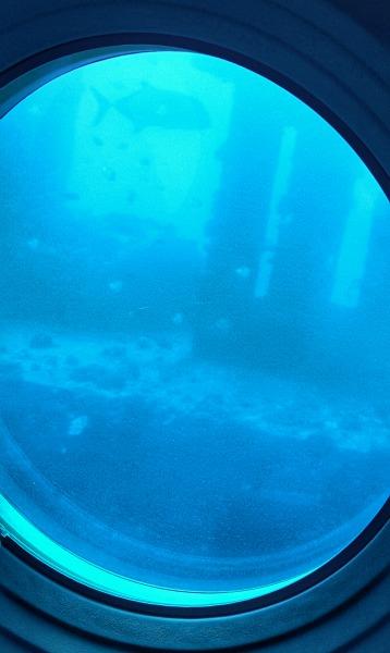 Atlantis Submarine - Hawaii's Fun Eco-Tour
