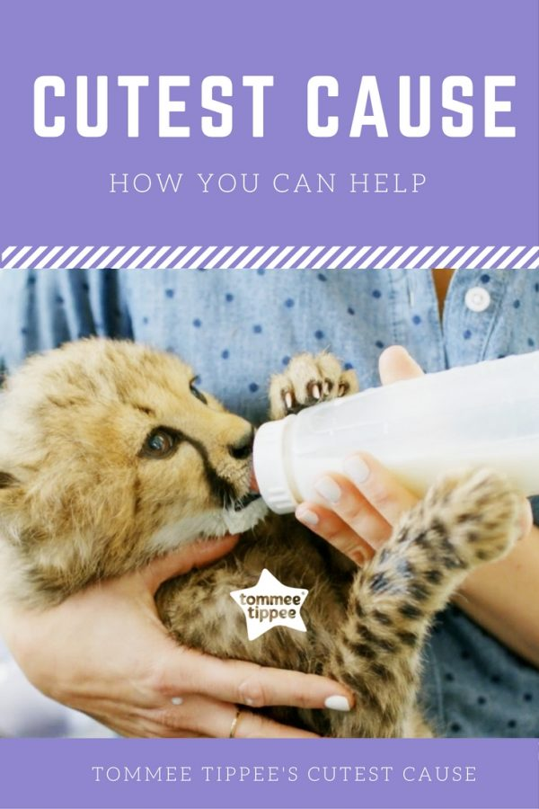 Tommee Tippee's Cutest Cause and how you can help!