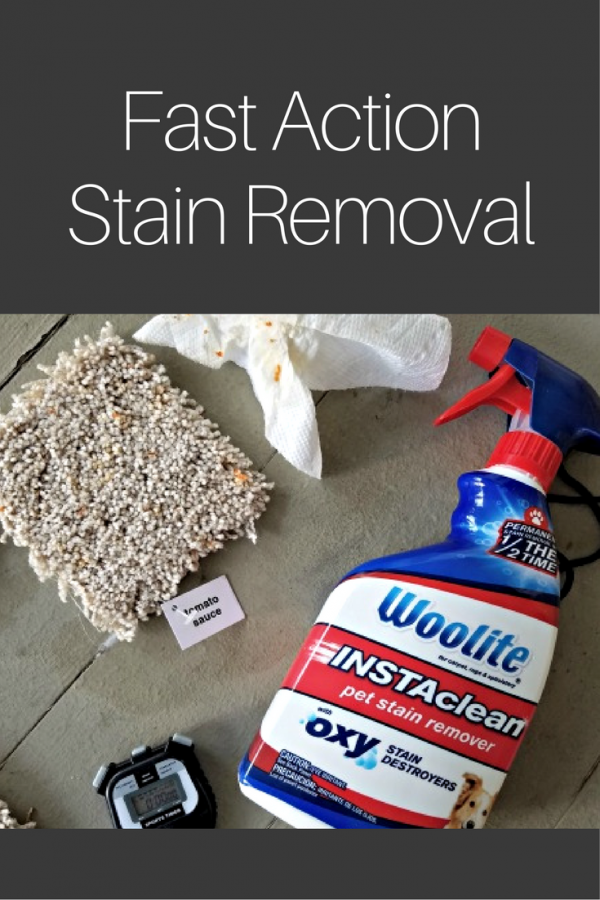 Fast Action Stain Removal with Woolite INSTAclean Stain Remover