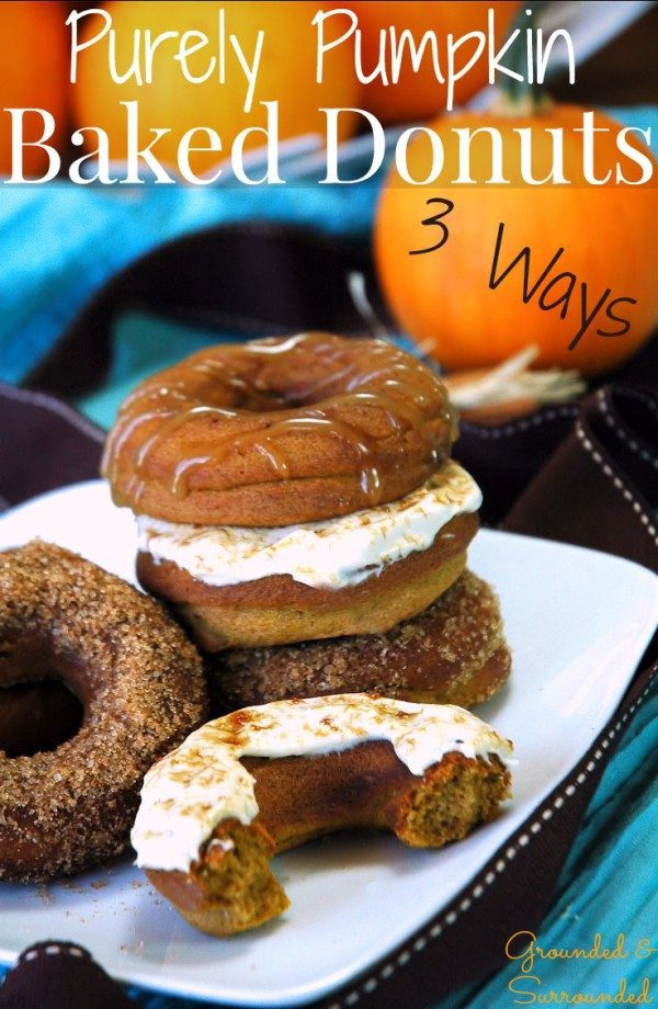 pumpkin-donuts-baked-3-ways-from-grounded-and-surrounded