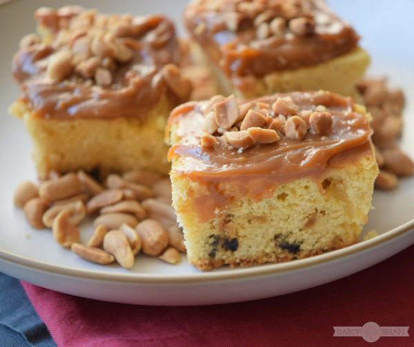 salted-caramel-butter-bars-from-darcy-and-brian