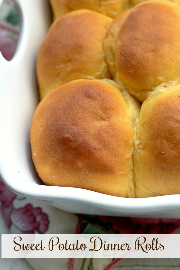 Sweet Potato Dinner Rolls from Bunny's Warm Oven